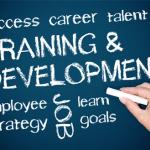 Pelatihan A Practical Guide To Training And Development